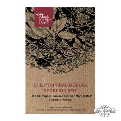 Chile Picoso 'Trinidad Scorpion Red' (Capsicum chinense)
